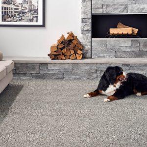 Carpet Flooring | Total Flooring Source